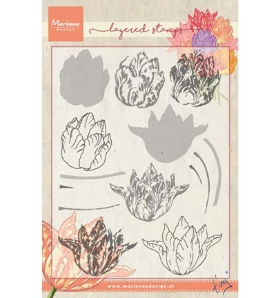 tc0852 Marianne D Stempel Tiny`s tulip (layering)