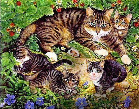 Diamond Painting katten 20x25cm
