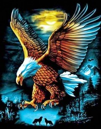 GM1746 Diamond Painting Set Eagle 50x40cm