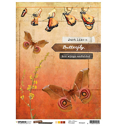 JL Rice Paper Butterfly Collection nr.23