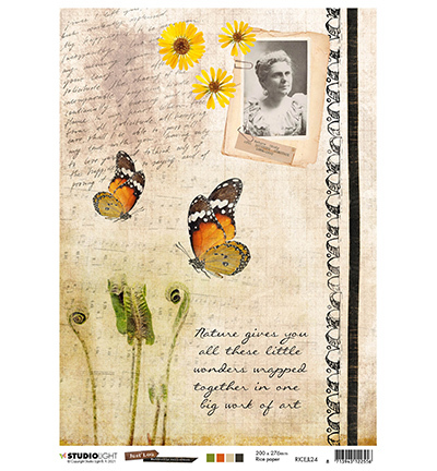 JL Rice Paper Butterfly Collection nr.24