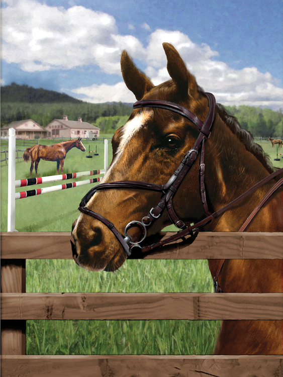 Painting by numbers EQUINE PADDOCK